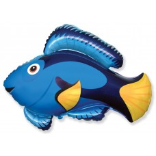 Фольгированный воздушный шар-фигура Рыба флаговый хирург голубой (56 см)