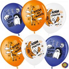 Воздушный шар С Днем Рождения Лови Счастье! ассорти пастель (30 см)