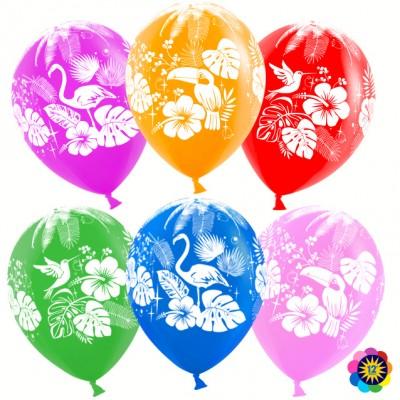 Воздушный шар Тропические птицы ассорти лайт пастель (30 см)