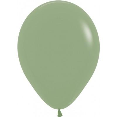 Воздушный шар эвкалипт пастель (30 см)